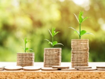 biljke-i-novac